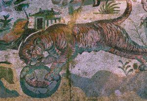 Tigress, Great Hunt, Piazza Armerina